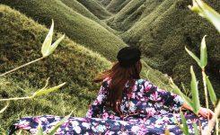 Dzuko Valley, Kohima, Nagaland